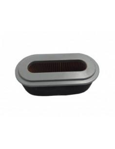 Filtr powietrza (06025/20303)